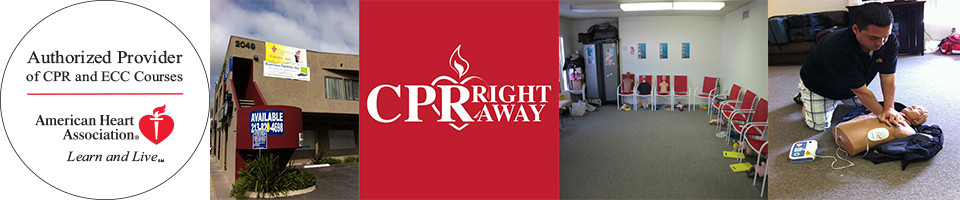 CPR Right Away!      Call, Text or Email Now for Appointment, 24/7!                          (310) 654-8687